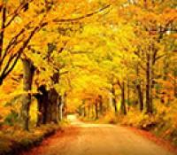 Zlatna jesen pred nama